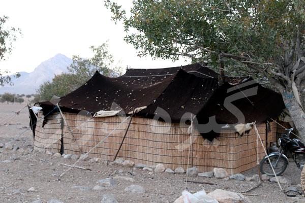 قیمت سیاه چادر اصل