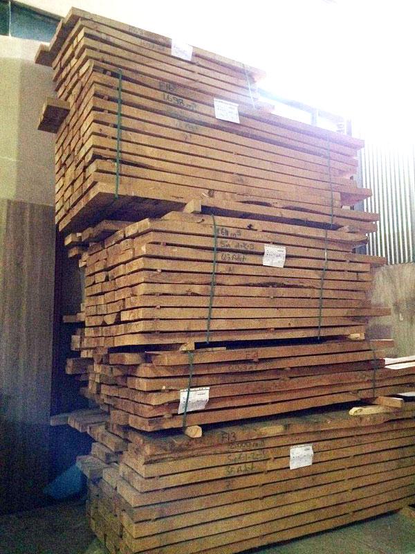 خرید چوب درخت شاه بلوط